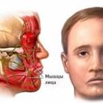 Как распознать и вылечить парез лицевого нерва