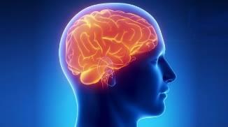 Экзогенно-органический синдром